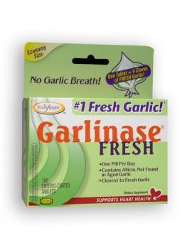 GARLINASE 5000 100 TABS