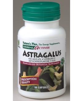 ASTRAGALUS 450 MG 60 CAPS