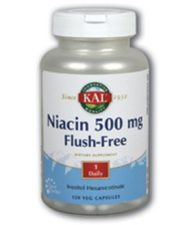 FLUSH FREE NIACIN 500MG 120CAPS
