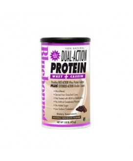 DUAL ACTION PROTEIN 1LB CHOC